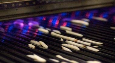 french fries on conveyor belt
