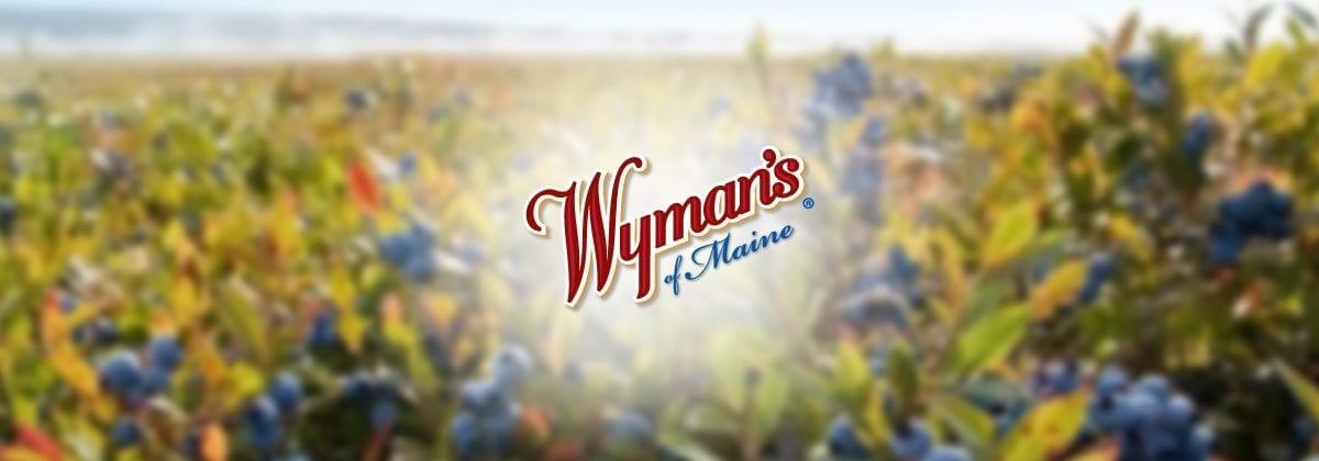 jasper wymans of maine logo