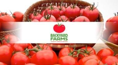 backyard farms tomatoes logo graphic