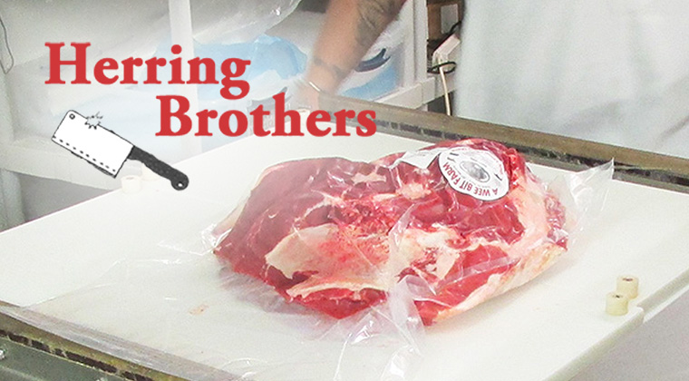 herring brothers logo graphic