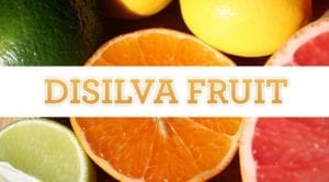 disilva fruit logo graphic