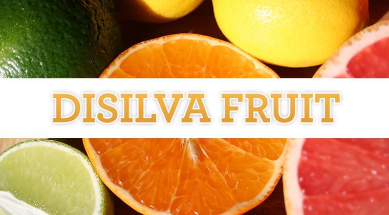 disilva fruit logo graphic