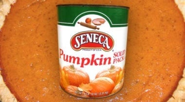 seneca pumpkin filling in a can