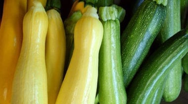 summer squash and succhini