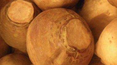 waxed turnips, rutabagas