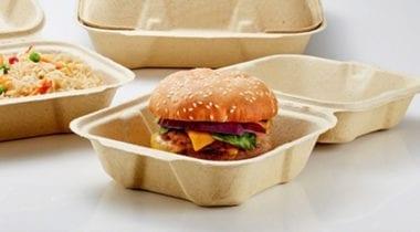 fabri-kal burger hinged container