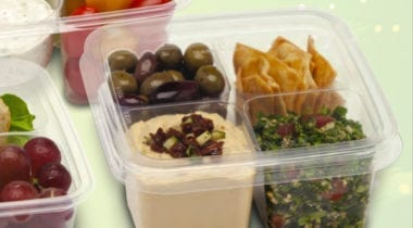 Fabrikal Plastic 4compartment Container