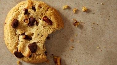 udi's gluten-free chocolate chip cookie