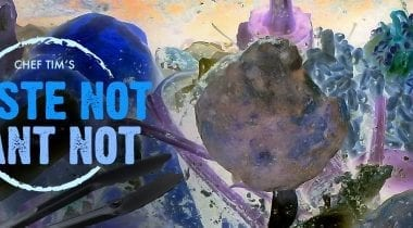 waste-not want-not graphic