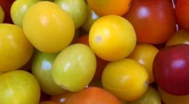 grape tomatoes, multi color