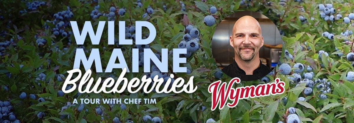 Wild Maine Blueberries video tour graphic