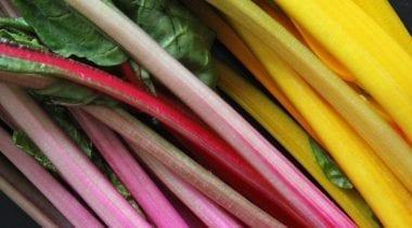 rainbow chard stalks