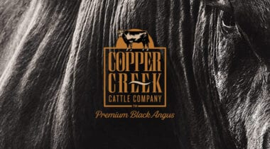 copper creek logo banner