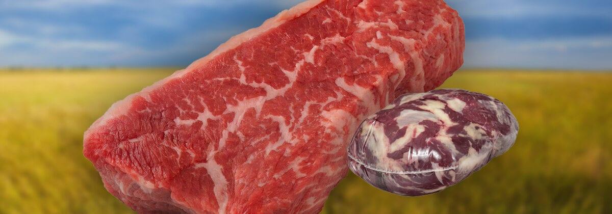 Tri Tip Beef