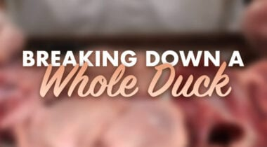 breaking down a whole duck graphic