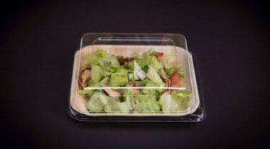 compostable takeout container with lid 9 inch square