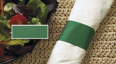 forest green napkin band