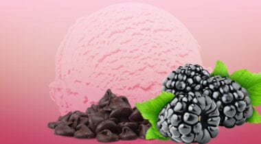 black raspberry ice cream with chocolate chips