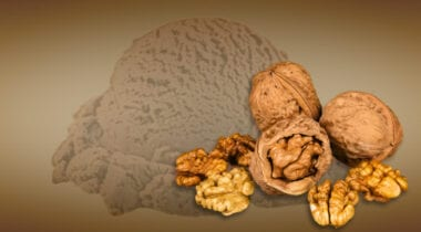chocolate walnut ice cream