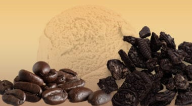 coffee ice cream with chocolate cookie pieces