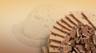 graham cracker ice cream with chocolate crunch pieces