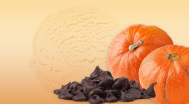 pumpkin ice cream with chocolate chips