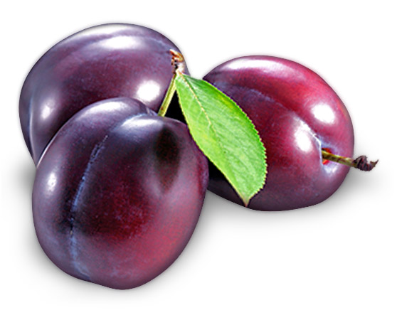 purple stone fruits