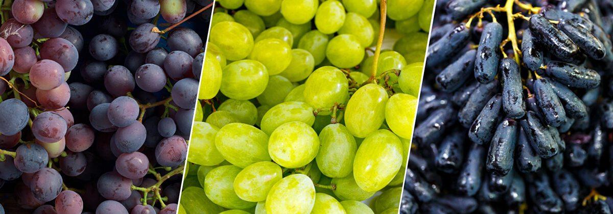 gum drop grapes, cotton candy grapes, moon drop grapes
